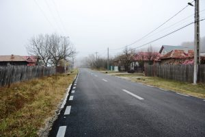 Drumul asfaltat la Cotmeana